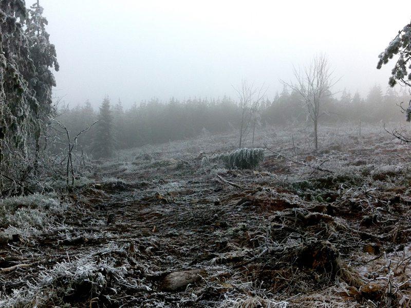 Erzgebirge 2014