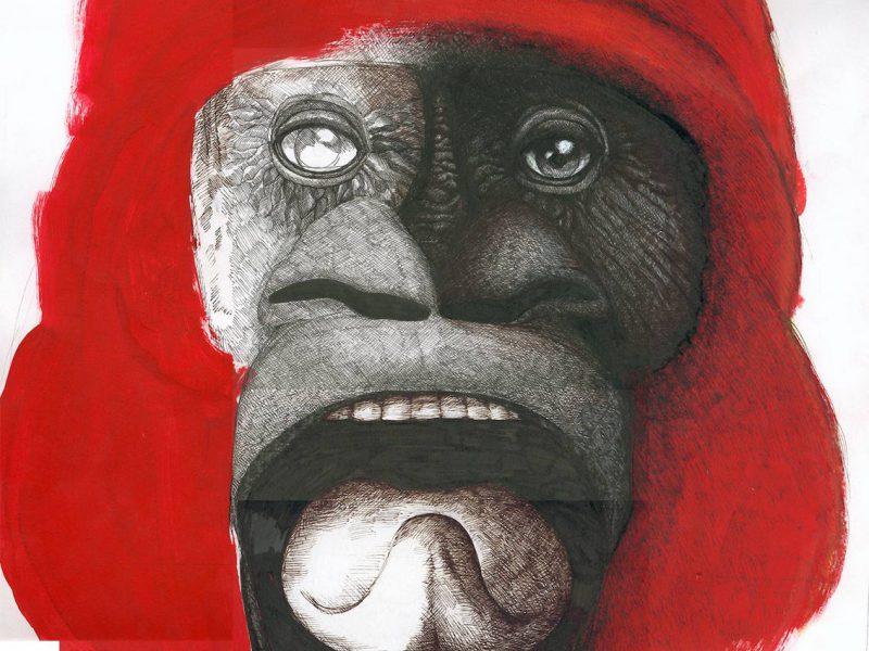 Gorilla - Isograph & Acryl 2010